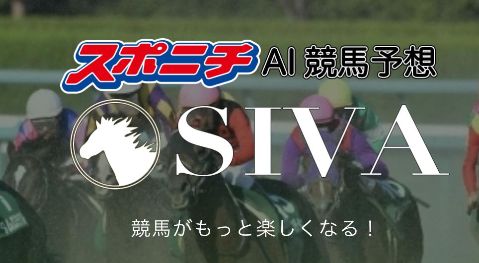 競馬予想サイト「SIVA」のオススメポイントご紹介!